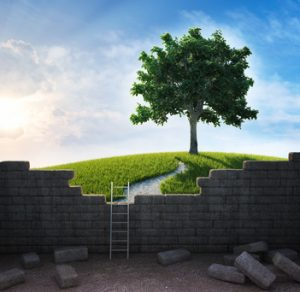 A beautiful landscape beyond the wall - freedom and opportunity concept